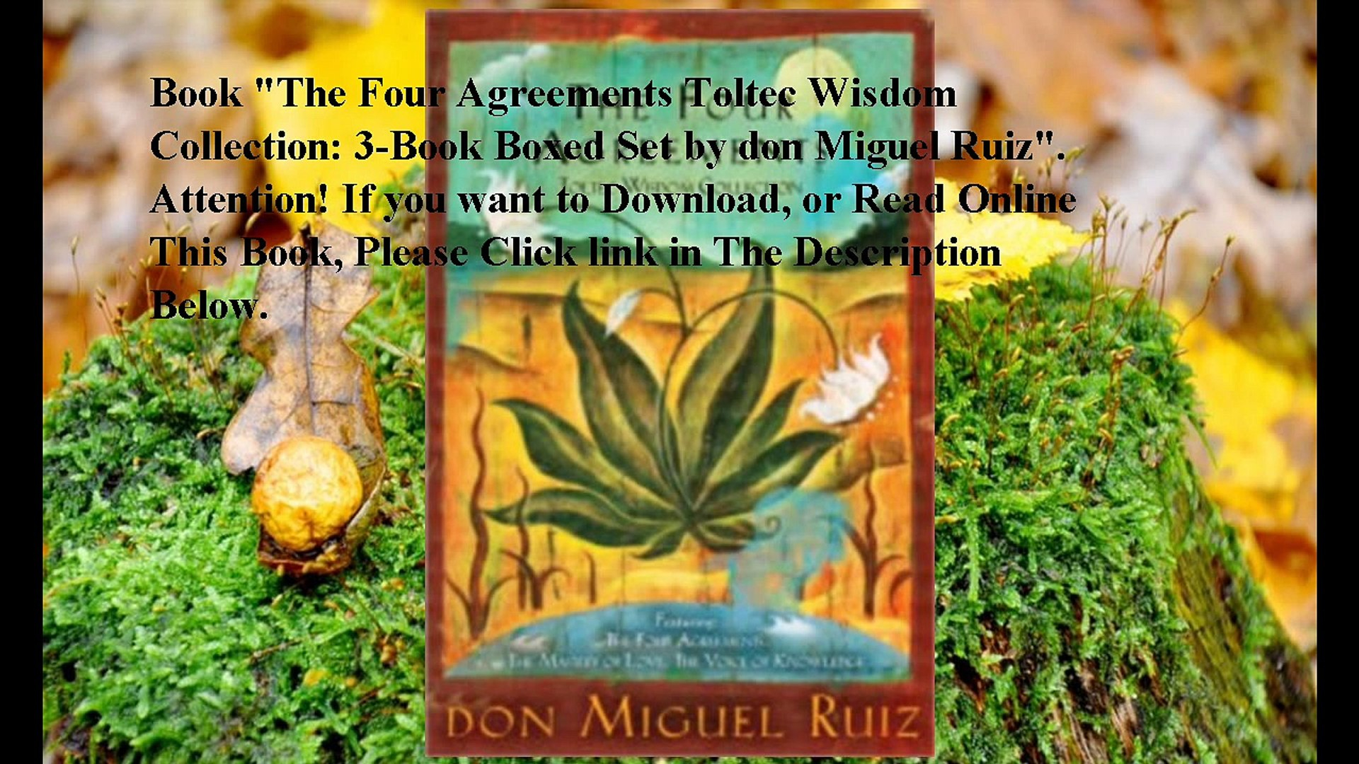 Four Agreements Book Free Download Download The Four Agreements Toltec Wisdom Collection 3 Book Boxed Set Ebook Pdf